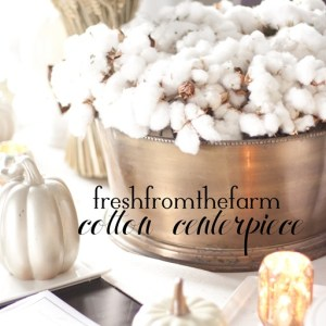 Fresh from the Farm Cotton Centerpiece