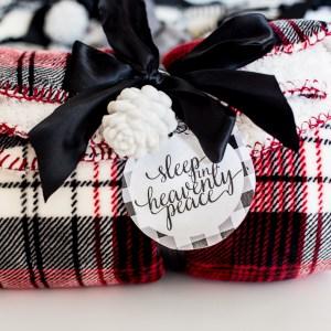 Easy Holiday Christmas Gifts_-14