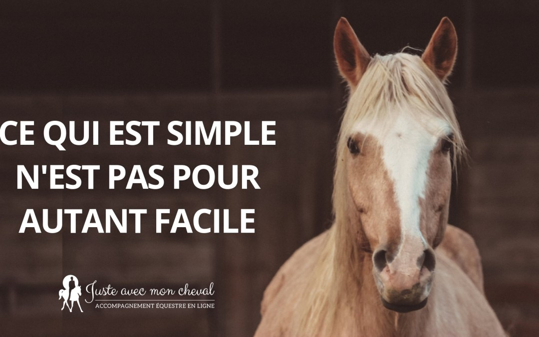 Il n'y a rien de plus simple qu'un cheval