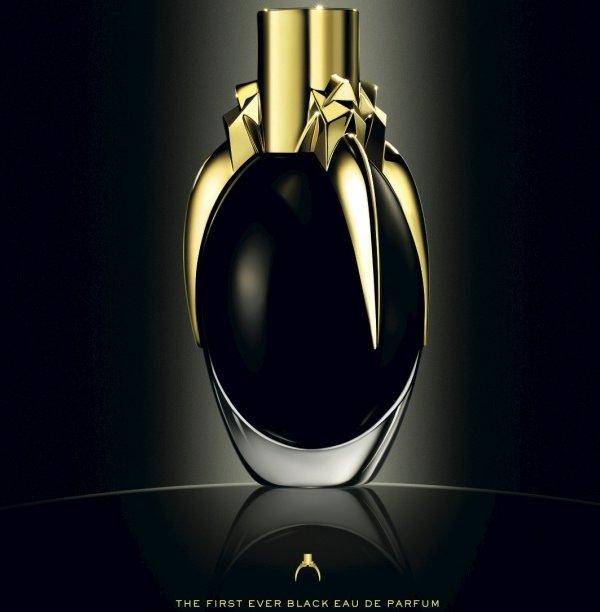 Lady Gaga unveil perfume 'Fame'
