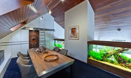 Netherlands: Villa with Aquarium