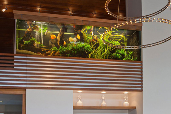 Villa-with-Aquarium-002