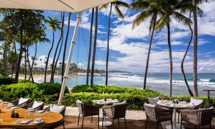 Dorado Beach Drive Reserve: A Historic Resort in Puerto Rico