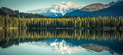 Mount Edith Cavell Before Sunset