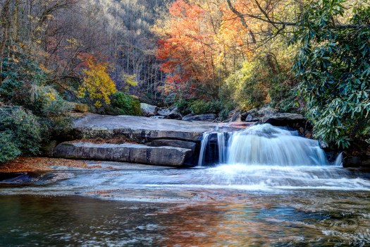 About a week ago I took this from Gorges State Park, which is nestled in North Carolina's Blue Ridge Mountains. This spot is just below Rainbow Falls, which is just around the next bend. There was a good little hike that seemed longer than it was on account of all the slopes and switchbacks, but was well worth when we finally arrived. I'm so glad we have state and national parks that preserve wilderness and landscapes like this for the public. If not for that much of the lands would be private and inaccessible. But that's certainly not a problem here as there were plenty of hikers enjoying the last days of fall before winter decides to take over for the duration.