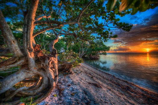 This was a recent sunset at Emerson Point in Manatee County, Florida. Emerson point is more about mangroves and wildlife than beaches. However, if you know where to look you can find a couple of secluded beaches like this one in and amongst the mangroves. The evening I shot this I had a couple of raccoons amble by. I think they were a little surprised since these little hideaways tend to be deserted, especially as the sun is going down. They decided to wait patiently from a few feet away as I took my pictures, probably wondering if I had any scraps of food to leave behind. The other thing I like about this spot is that we can bring our dogs here on a hot day. Most beach areas in Florida prohibit dogs, but since this isn't strictly a beach, dogs are allowed and they love to wade in the shallow water to chase fish or just cool off.