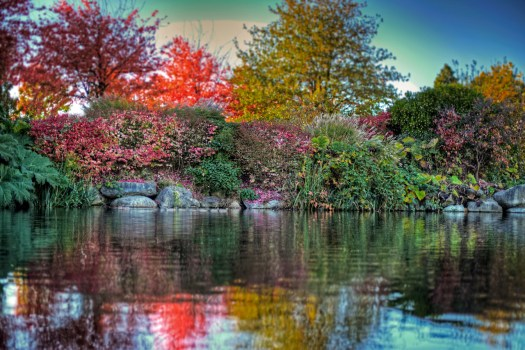 Back when autumn was still autumn I took this shot of a pond at the entrance to Stanley Park in Vancouver. Everyone was out taking pictures and there was a general feeling of urgency as we all wanted to capture the fall colors before they disappeared. At home in Florida we don't really get colors like this so I was doubly stoked and walked around snapping shots for hours until the last light of the day. I've still got a few left from that day so I'll post them from time to time even though autumn is long gone. See, I'm still stoked.