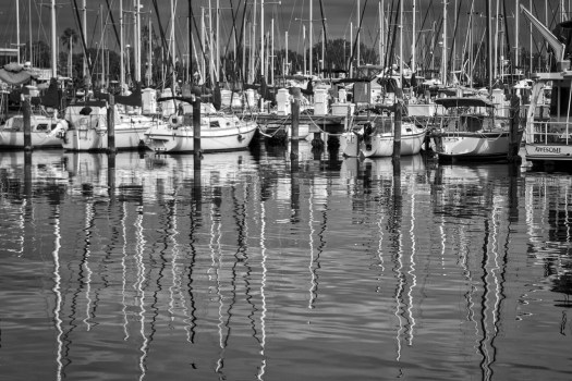 My wife and I went for a walk along the waterfront in St Petersburg Florida the other day. Everyone was out and about and enjoyed the warm weather. The calm water created these little ripples which caught my wife's attention and then mine. I admit it, I'm an unabashed copycat and have no shame. Such as it is here are the boats reflected in the water and something to put us all in a relaxed state such that we might come up with our own ideas and not copy others. But then imitation is the sincerest form of flattery, so in reality I'm just flattering my wife. ;-)