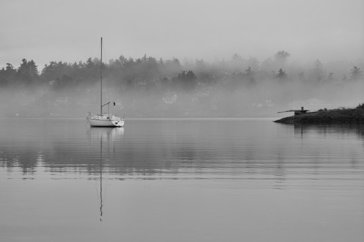 I woke up early to capture this while the water was still calm and the fog was deciding how long it might linger. Ever notice how when you first wake up it feels a little like this? In art, photographs or whatever we try to take meaning and sometimes look for metaphors. I think I do that.  Reflections, mist, space, calm. I wish I could take this feeling with me during the day. Maybe I can, just a little bit.
