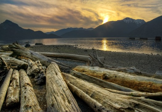 Tomorrow I'm taking a ferry from the mainland to Vancouver Island. All along the coast are ferry terminals like this one at Horseshoe Bay. I took this shot a few months back and I was intrigued by the big logs along the shore. Logging is big here so maybe these are the remnants of that or just trees along the coast that succumed to the elements. Nevertheless, summer is winding down and everyone seems to be frantically enjoying the last of the good weather before the short rainy days of winter return. For now, that's distant concept and theres much to do on the long weekend here in British Columbia. Happy Friday everyone.