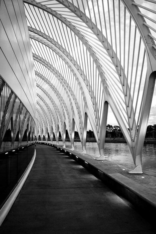 Just outside of Orlando on I4 is the Florida Polytechnic University. Honestly, I don't know a thing about it, yet the architecture of the main building is nothing short of amazing.  I managed to stop over on one recent trip and capture a few images. This is a study in symmetry and lines. I think if I was a student I would feel right at home here.
