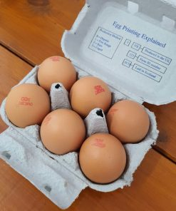 Some of our fresh organic eggs in halifax in their box at Just Gaia, Halifax in The Piece Hall