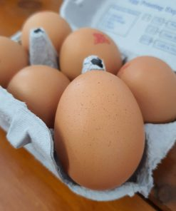 Some of our fresh organic eggs in halifax close up of one of the eggs in Just Gaia, Halifax in The Piece Hall