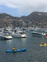 Boats in Catalina