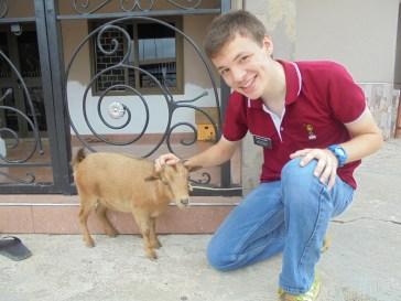 2016-9-5-goat-3
