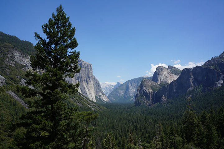Yosemite-National-Park-tunnel-view