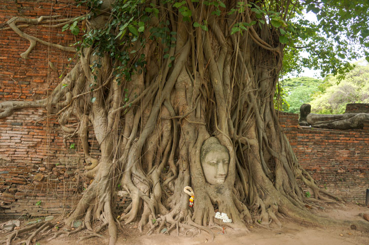 Wat Mahatat Ayutthaya Thailand