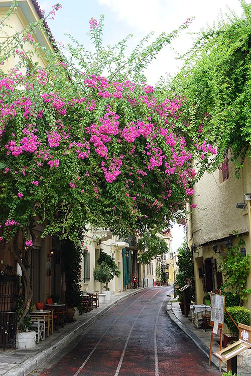 Athene Plaka