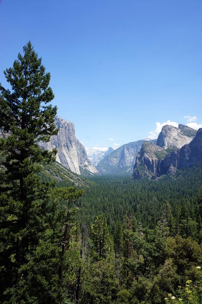 USA Roadtrip Yosemite
