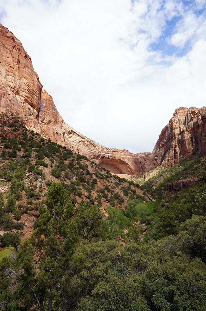 USA Roadtrip Zion