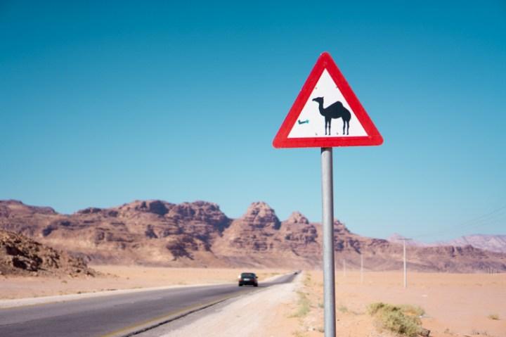 Rondreis Jordanië per auto