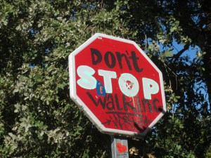 Camino Stop Sign