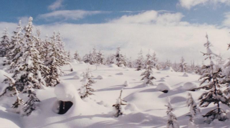 Bonanza ski pass
