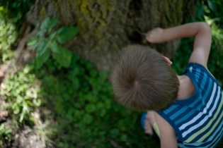 He found another tree with an animal-hole. This time, he was brave enough to dig into it with a twig. It wouldn't be a true outing with a three-year-old boy if he didn't somehow find a way to get dirt under his fingernails. =)