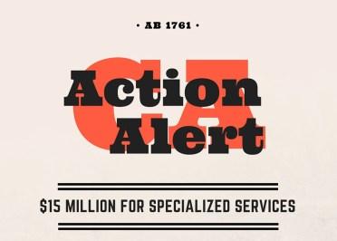 Action-Alert-web