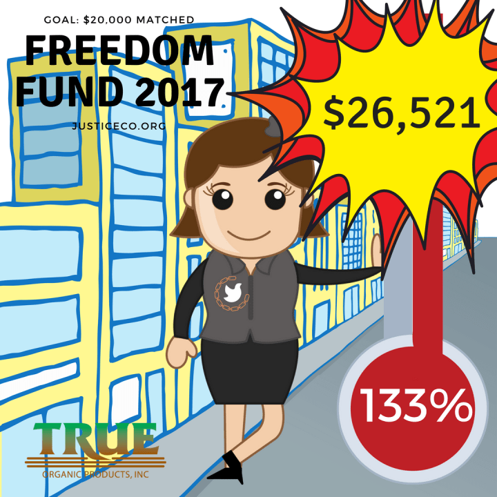 Copy of freedomfund 2017 progress 48% (1)