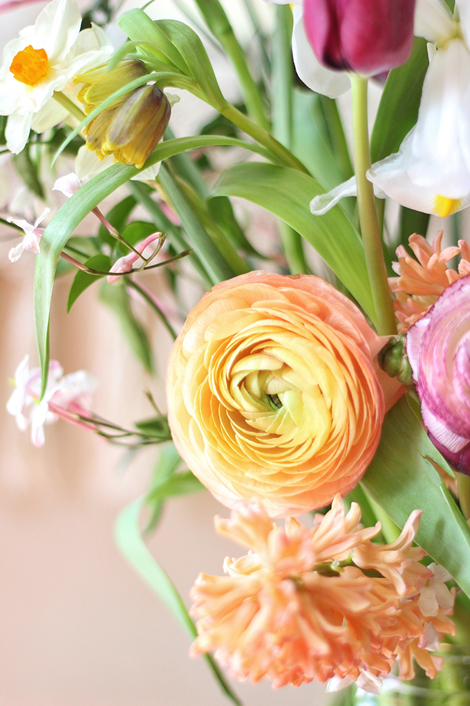 An Introduction to Spring Flowers | Ranunculus // JustineCelina.com