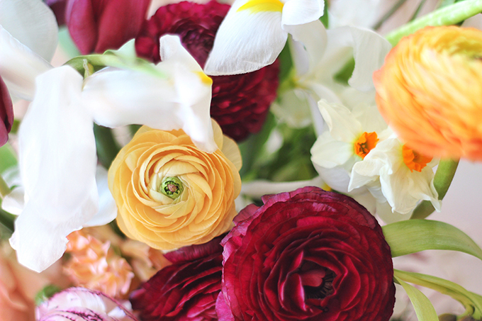 An Introduction to Spring Flowers   Ranunculus // JustineCelina.com