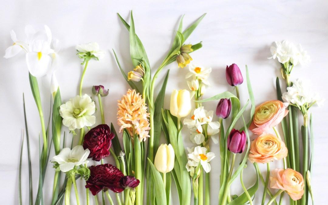 Digital Blooms Desktop Download 2 | April 2016 // JustineCelina.com