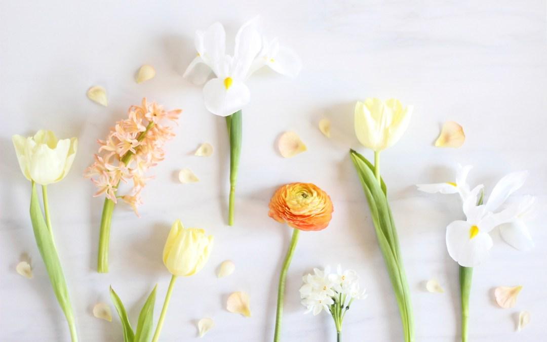 Digital Blooms Desktop Wallpaper Download 1 | April 2016 // JustineCelina.com x Rebecca Dawn Design