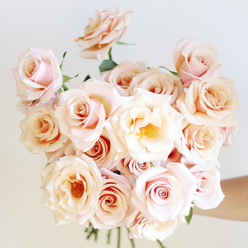 All About Roses   Mother Of Pearl Hand Bouquet // JustineCelina.com X  Rebecca
