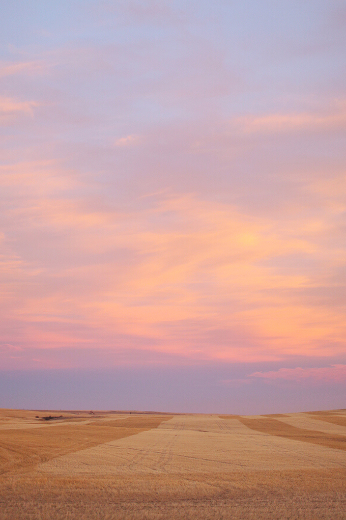 Alberta Travel Fashion Blogger, Prairie Field at Sunset | Drumheller, Alberta | Alberta Badlands | Fall Foliage // JustineCelina.com