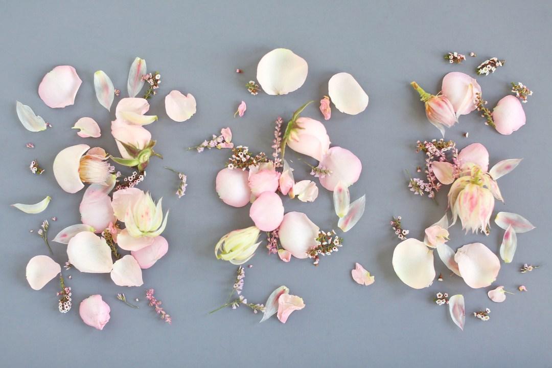 DIGITAL BLOOMS FEBRUARY 2018   Free Blush Floral Desktop Wallpapers for Valentine's Day   Design 2 // JustineCelina.com x Rebecca Dawn Design