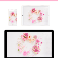 DIGITAL BLOOMS ARCHIVES | FREE DESKTOP WALLPAPERS
