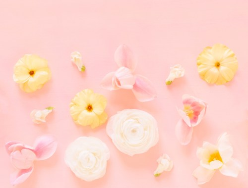 DIGITAL BLOOMS MAY 2020 | FREE DESKTOP WALLPAPER | A soft, feminine, pastel floral FREE Desktop Wallpaper for Spring 2020 | Pastel Pink and Yellow Floral Tech Wallpaper for Spring | Free April Flower Tech Wallpapers | JustineCelina Spring 2020 Digital Blooms | Free Floral Desktop Wallpaper featuring White Ranunculus and Yellow Butterfly Ranunculus, White Hyacinths and refurled Blush and White Tulips | Tulip Free Tech Wallpaper | Cheerful Spring Flower Tech Wallpaper // JustineCelina.com