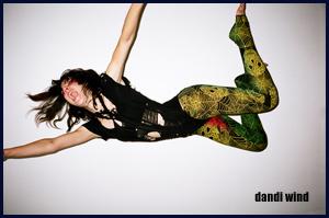 dandi wind.com