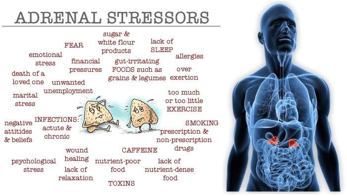 adrenal stressors
