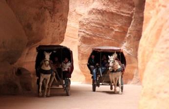 Carriages Through the Siq