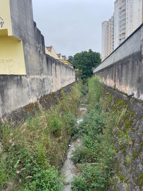 Jardim ds Delícias - 32, Justino, 2020.
