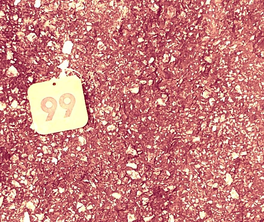 """""""99"""", Justino, fotografia, 2021."""