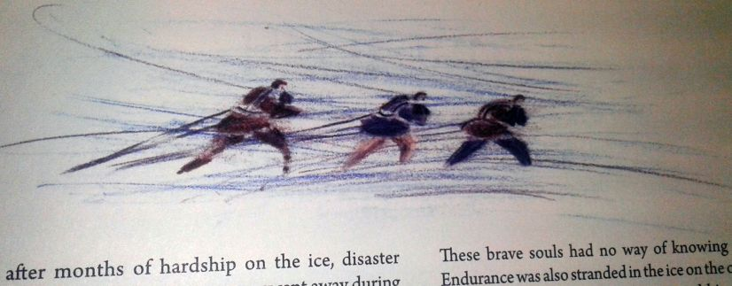 """""""The Ross Sea Party"""""""