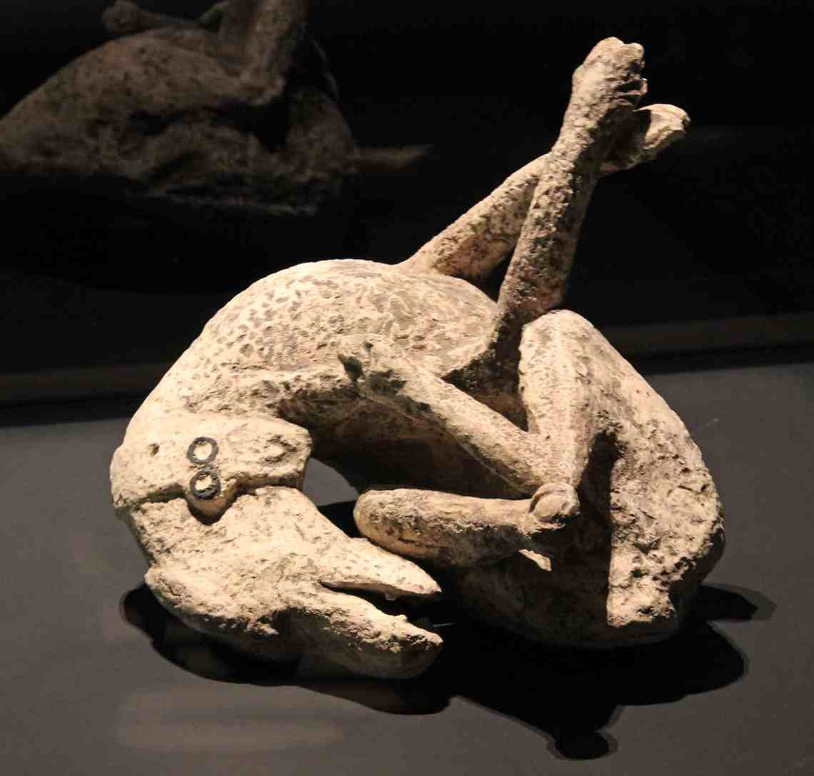 Pompeii Exhibition at the ROM in Toronto