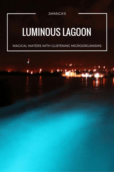 Luminous Lagoon Jamaica - Bioluminescent waters that glow bright blue!