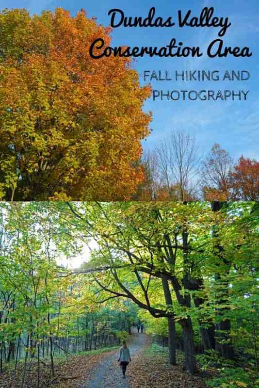 Dundas Valley Conservation Area Fall Hiking and Photography