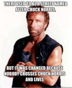 dont cross norris