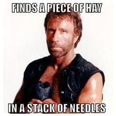norris hay